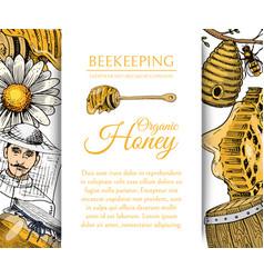 honey waxing bee and beehive flyer poster organic vector image