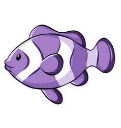 Purple clownfish on white background vector