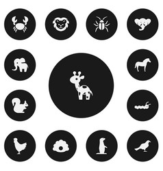 set of 13 editable zoology icons includes symbols vector image