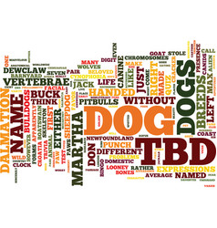 Test your canine acumen text background word vector