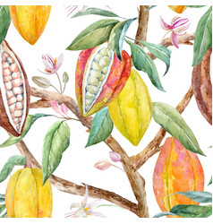watercolor cacao pattern vector image vector image