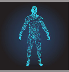 low poly wireframe human body abstract vector image vector image