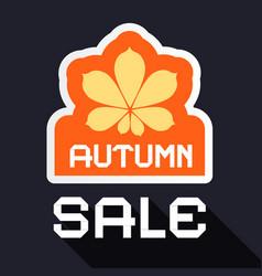 autumn sale banner with chestnut leaf symbol flat vector image