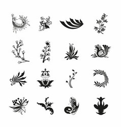 Black Floral Set vector image
