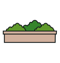 bushes icon image vector image
