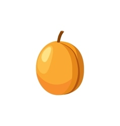 Fresh apricot icon cartoon style vector