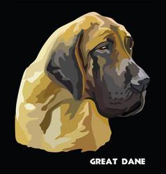 Great dane colorful portrait vector