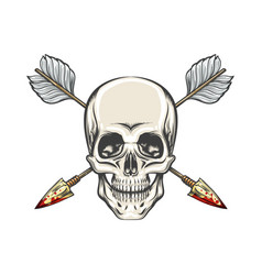 Human skull and arrows tattoo vector