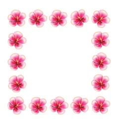 Pink hibiscus frame vector