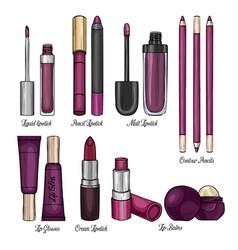 set of lipsticks and lip glosses vector image