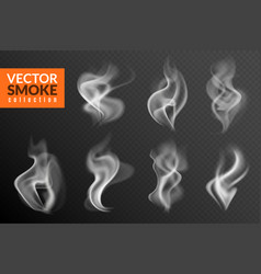 Smoke isolated white smoking clouds hot food vector