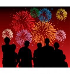 fireworks display vector image vector image