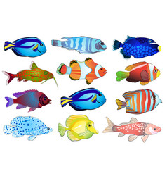 set of aquarium fish vector image vector image