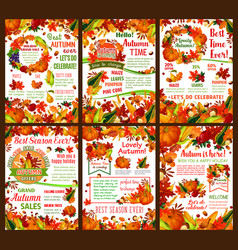 autumn harvest sale offer banner template set vector image