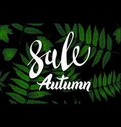 autumn sale banner design with hand drawn vector image