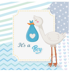 bashower a boy design vector image