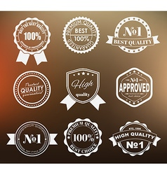 design labels with quality mark vector image