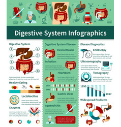 Digestive system flat infographics vector