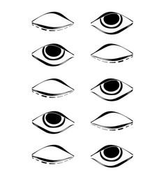 Eyeye vector