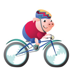 Pig character riding a bicycle with bike helmet vector