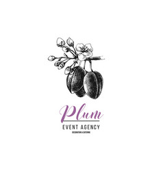 plum event agency logo template vector image