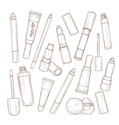 set of lipsticks and lip glosses vector image