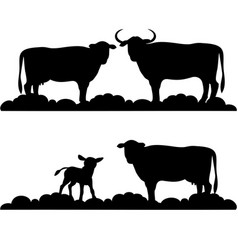 Silhouettes cows and small calves vector