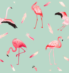 tropical flamingo seamless summer pattern feathers vector image