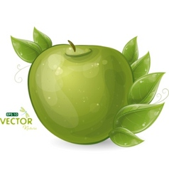 green apple and leaves vector image vector image