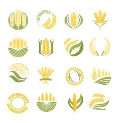 Wheat icon set vector image