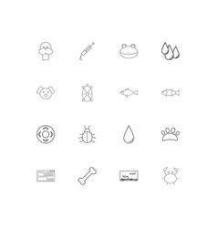 animals linear thin icons set outlined simple vector image