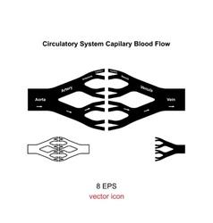 Blood circulation system vector