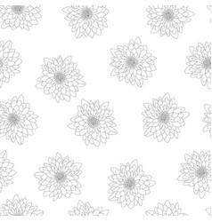 Chrysanthemum outline on white background vector
