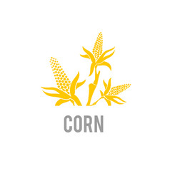 Corn icon agriculture wheat vector