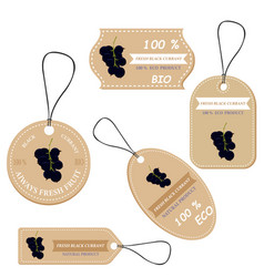 labels with various fruitsfor black currant vector image