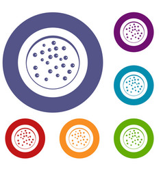 peppercorns on a plate icons set vector image