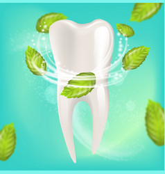Realistic natural mint toothpaste vector