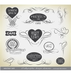 set calligraphic vector image