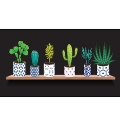 Succulents and cactus plants in pots vector