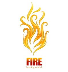 burning flame of fire vector image