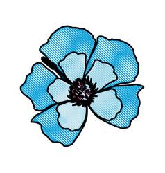 drawing blue flower decoration floral ornament vector image