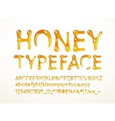 honey typeface vector image