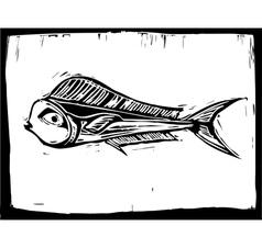 Mahi Mahi Fish 1 vector image vector image