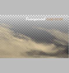 dust cloud with dirt on transparent background vector image
