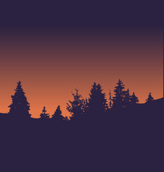 forest silhouette against background sunset vector image