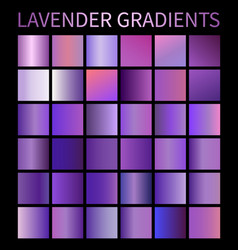 lavender gradients set for design purple vector image