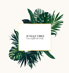 Nature tropical arrangement exotic leaves bouquet vector