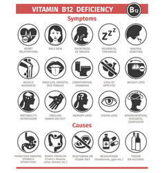 Symptoms and causes vitamin b12 deficiency vector