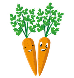 two cheerful carrots vector image