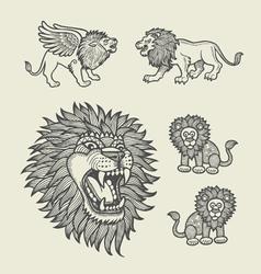 Lion Decoration Sketches vector image